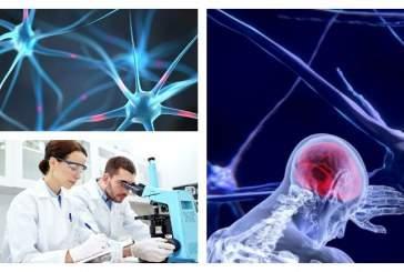 Ученые обнаружили новую причину болезни Паркинсона