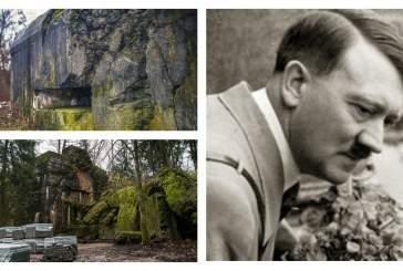В Польше найдены теплицы Гитлера