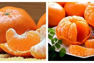 Врач-диетолог рассказала о вреде и пользе мандаринов