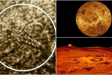 Российский ученый Леонид Ксанфомалити обнаружил жизнь на Венере