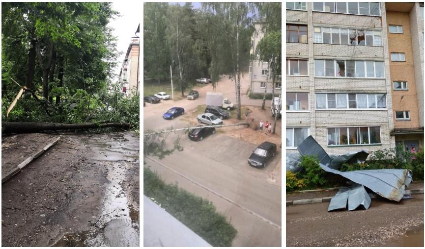На севере Омской области ураган вырывал деревья с корнями