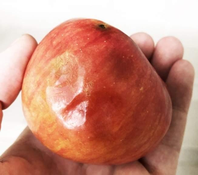 Бывший «Профпит» вновь «удивил» школьников невкусной едой
