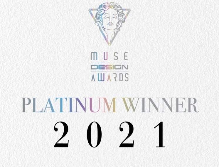 Пылесос Redroad V17 занял первое место на премии MUSE Design Awards 2021